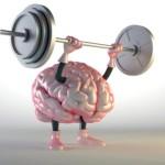 Как сохранить здоровье мозга? Семь способов заставить мозг работать