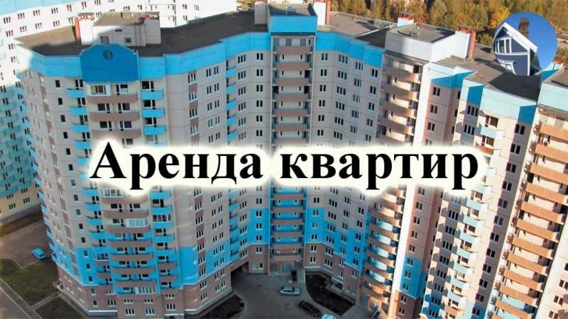 volosataya-popa-porno-foto