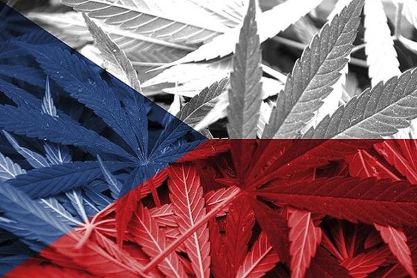 марихуана в чехии